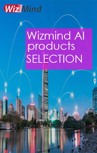 wizmind AI products selelction