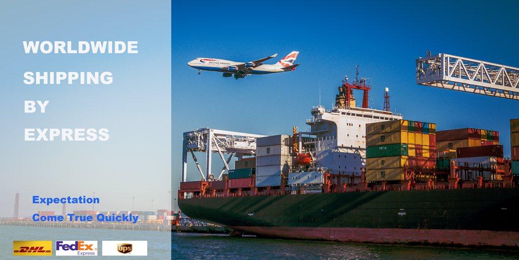 Worldwide shipping DAHUA camera